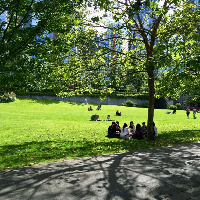 modern-coup-coal-harbour-park-picnic